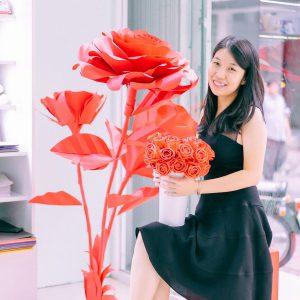 Backdrop Hoa Giấy, Cây Hoa Khổng Lồ